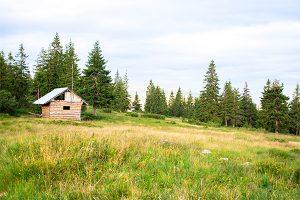 田舎の土地活用20選!山林・農地・宅地でできる活用術を網羅