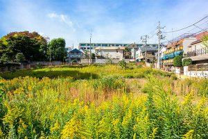 300坪の土地活用とは?価値ある土地に変える活用方法を解説!